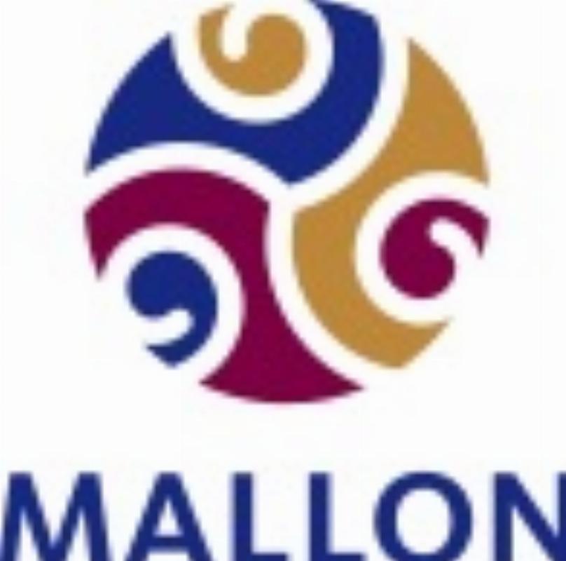 Mallon - Waarden in praktijk en Binnen Bereik